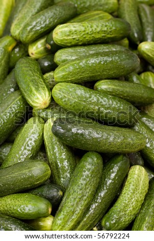 Green cucumbers background - stock photo