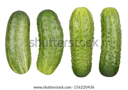 Green cucumbers isolated on white background - stock photo