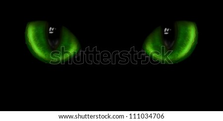 Green dangerous wild cat types on black Background - stock photo