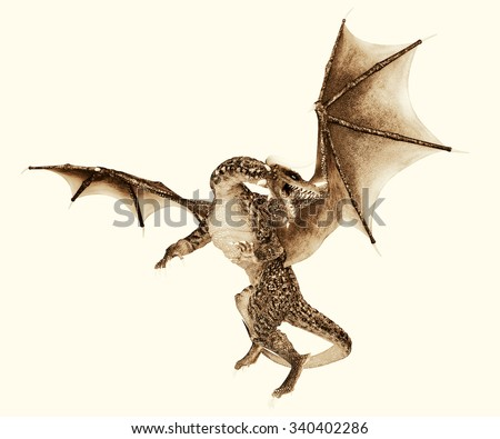 green dragon old vintage picture - stock photo