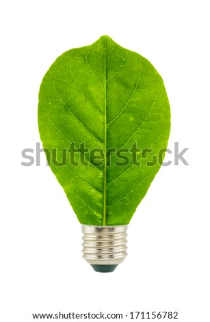 Green eco energy concept isolated on white background. - stock photo