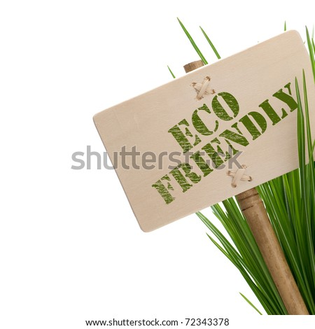 green eco friendly message on a wooden panel and green plant - image is isolated on a white background - stock photo