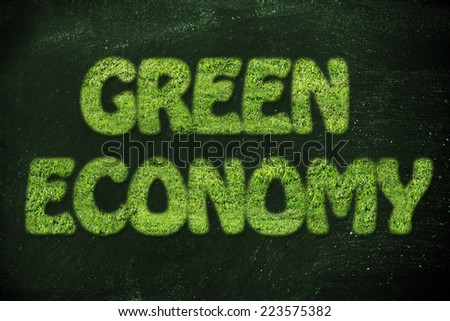 green economy and sustainability: writing made of grass texture