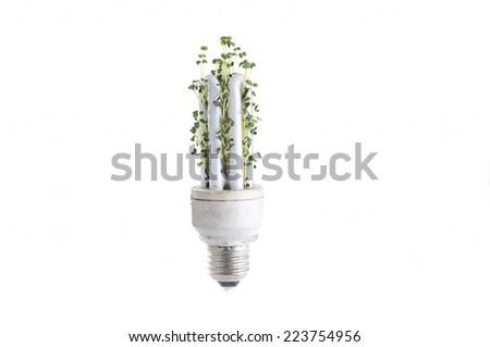 Green Energy. - stock photo