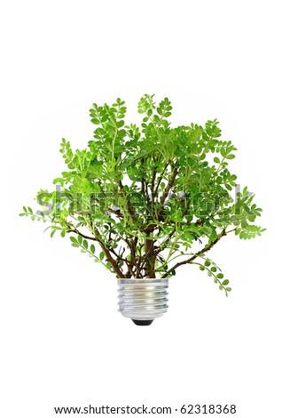 Green energy - stock photo