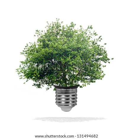 Green energy concept - green tree growing out of a bulb - stock photo