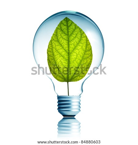 green energy concept, plant growing inside the light bulb - stock photo