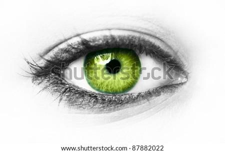 Green eye isolated on white - stock photo