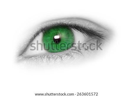 Green Eye isolated on white background - stock photo