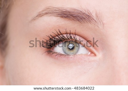 Green Eye Makeup. Eyes Make-up. Beautiful Eyes Make up detail.