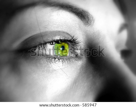 Green eyes of a beautiful woman - stock photo