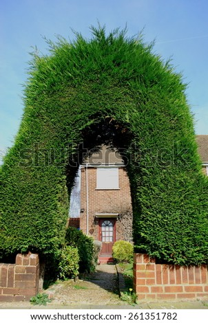 Green fence with arch - stock photo
