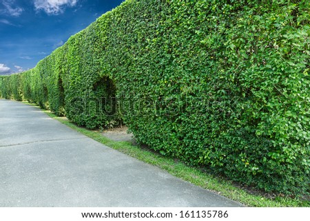 green fence with  concrete walkway as background - stock photo