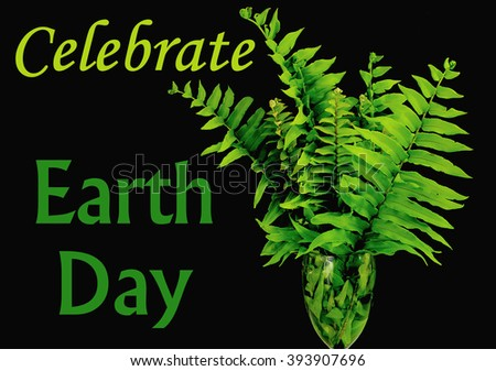 Green fern fronds in a vase on black background as image for Earth Day on April 22. Celebrate Earth Day message added. Horizontal composition - stock photo