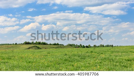 Green field and blue sky day in May. - stock photo