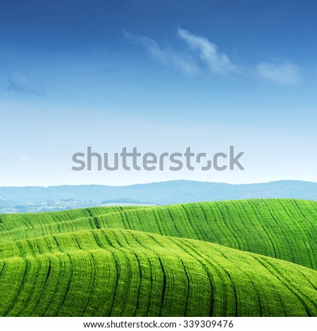 Green field and blue sky. Italy,
