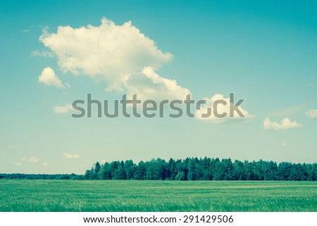 Green field and blue sky/retro filter - stock photo