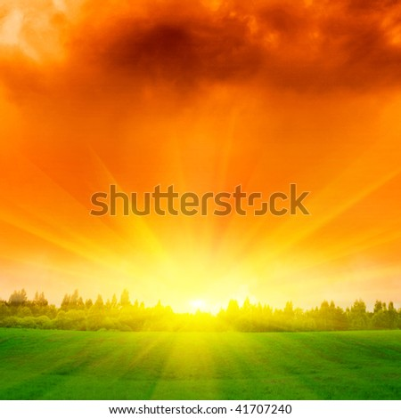 Green field and forest at sunset. - stock photo