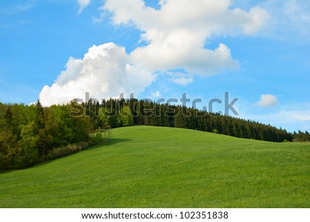Green Field and forest Hill with blue sky