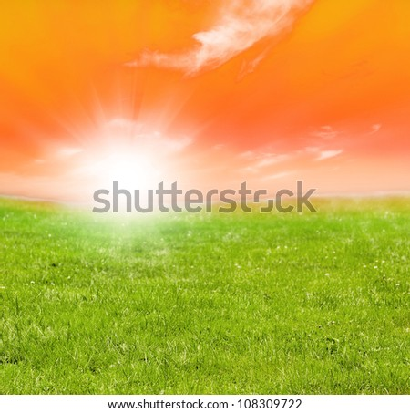 green field and sun
