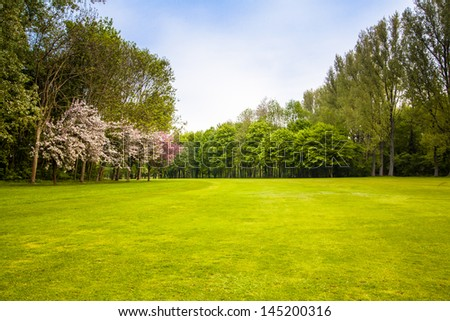 green field and trees. Summer landscape with green gras - stock photo