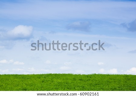 Green Field at sunny summer day - stock photo