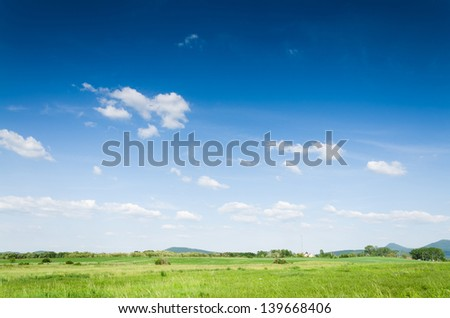 green field background - stock photo