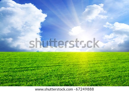 Green field in sun beams - stock photo