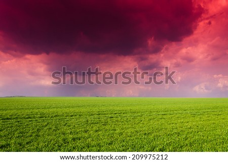 green field in the night