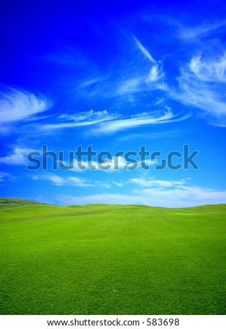 green field in the summer - stock photo