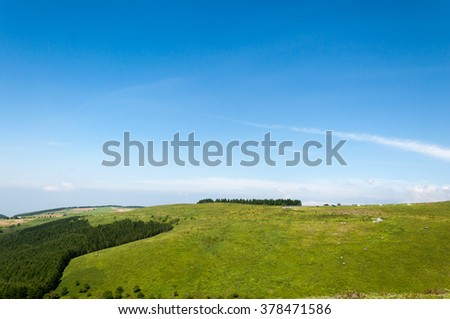 Green field landscape with a lonely tree on the right and clouds on the sky - stock photo