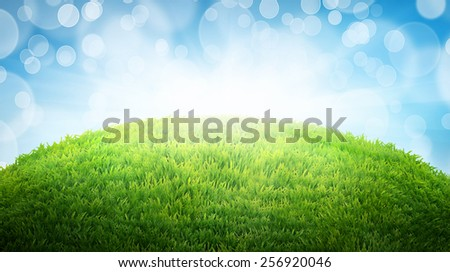 green field of fresh grass. natural easter background with place for your text - stock photo