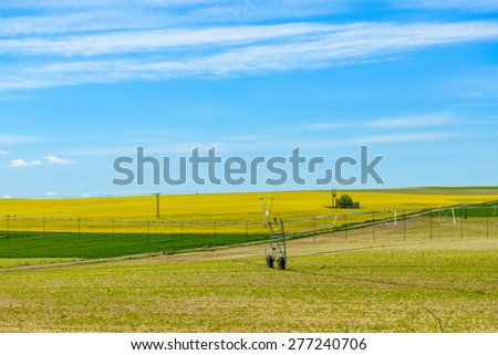 Green field on a background of blue sky with clouds
