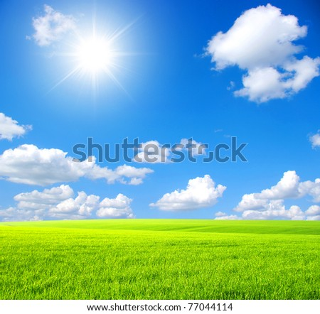 Green field,  sky and sun - stock photo