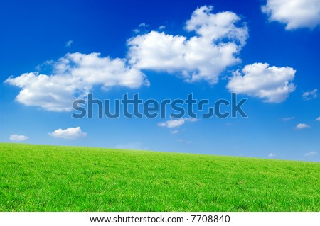 Green field, the blue sky, white clouds. A landscape
