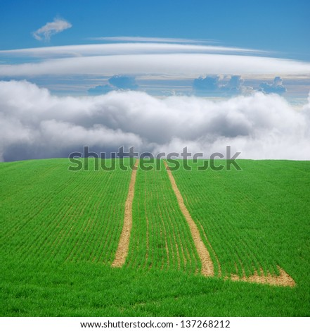 green field trip to heaven, tracks leading to the blue sky