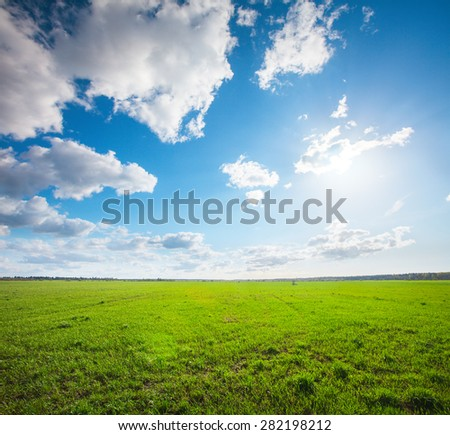 Green field under blue cloudy sky whit sun - stock photo