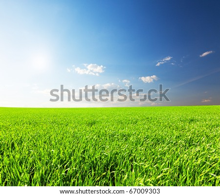 Green field under blue cloudy sky with sun - stock photo