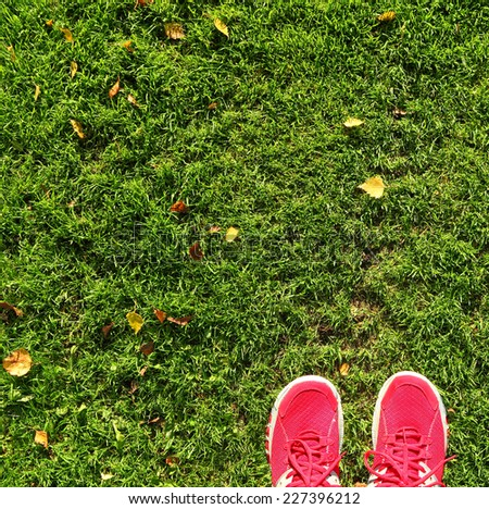Green field with autumn yellow leaves and feet in red shoes background - stock photo