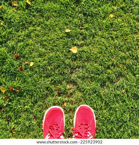 Green field with autumn yellow leaves and feet in red shoes background, abstract - stock photo