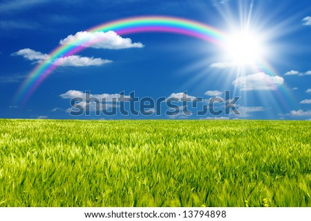Green field with cloudy sky - stock photo