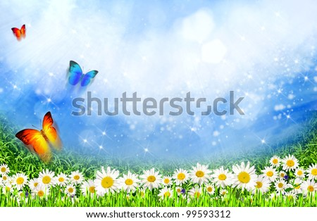 green field with daisy flowers under the sunlight as natural background - stock photo
