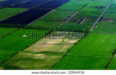 Green field with grass from a height - stock photo