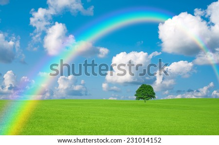 Green field with lone tree and rainbow - stock photo