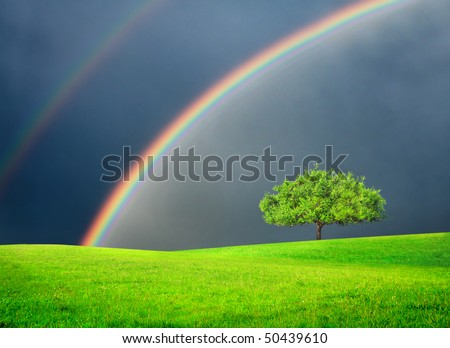 Green field with tree and double rainbow - stock photo