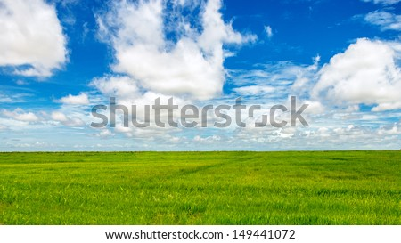 Green fields and blue sky - stock photo