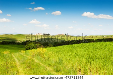 Green fields and blue sky. Beautiful Tuscany landscape, province of Certaldo, Italy