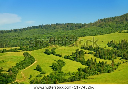 green fields and forests of highlands