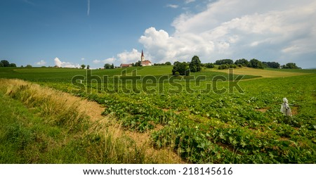 Green fields and small village on hill in sunny,summer day.Styria,austria. - stock photo