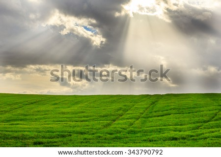 Green fields in autumn morning with sunrise and clouds